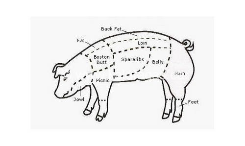 Beef Butchering also Grilled Pork Steakettes in addition Clipart 169929 furthermore 86360 meat Of Cow additionally 3. on parts of pig meat cuts